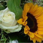 Uitvaart geloof,hoop,liefde DSC03983kopiethumbnail