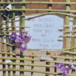 Intrede voorganger Een lamp...DSC_0309kopiekopie thumbnail