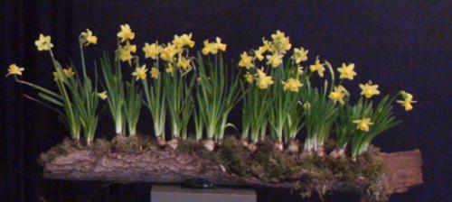 Een kruis vol bloemen 500 breed helder DSC05339