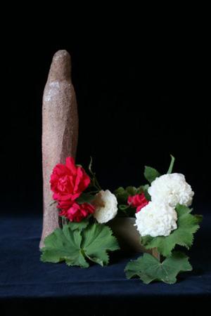 IMG_3864 maria rode en witte rozen