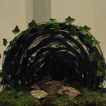 Schikking 40 dgn-tijd B-jaar met de tunnel thumbnail