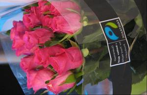 verpakking fairtrade-bloemen 300 breed